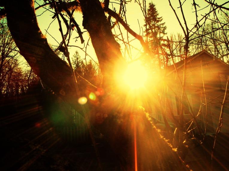 scalding-sun